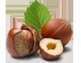 Geschmacksrichtungen - Schokoladensalami und Schokoladensalami mit Haselnüssen